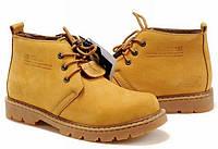 Мужские демисезонные ботинки Сaterpillar CT-10890-89