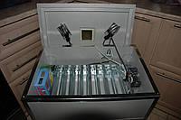 Инкубатор Наседка ИБА-70 автомат (цифровой терморегулятор)