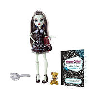 Лялька Monster High -  лялька Френкі Штейн із улюблинцем  (Кукла Фрэнки Штейн из школы монстров Frankie Stein)