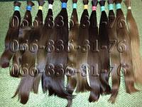 Славянские волосы 60 см. Русые, неокрашенные.