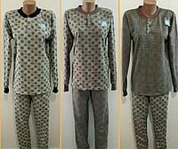 Пижама мужская байковая