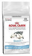 Royal Canin Queen для беременных и кормящих кошек, 4 кг
