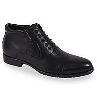 Стильные мужские ботинки Cosottini (зимние, натуральная кожа, классические, на шнуровке, на замке, теплые)