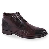Классические мужские ботинки Cosottini(зимние, коричневые, удобные, теплые, на замке, на шнуровке)