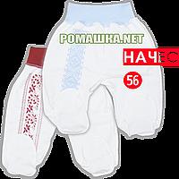 Штанишки (ползунки) на широкой резинке с украинским орнаментом (принт), начес (футер), ТМ Алекс, р.56, Украина