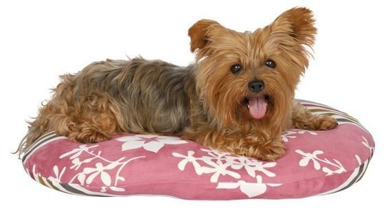 Лежанки, мягкие места, домики для собак и кошек