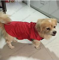 Попона для собаки на флисе красная