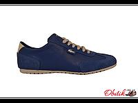Туфли подростковые/женские Lacoste кожа замша синие La0001