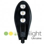 Светодиодный уличный LED светильник EcoWay 110W 5000K (0200)