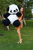 Большая мягкая игрушка Панда 150 см
