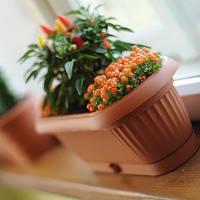 Горшок для цветов с подставкой Prosperplast Terra 15009, 31,6 см