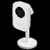 IP камера Edimax IC-3116W (720p, ночное видение, WiFi)