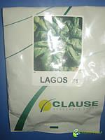 Семена шпината Лагос 250г