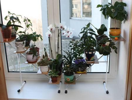 Многоярусная подставка для цветов из дерева своими руками