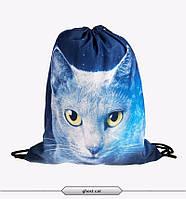 Распродажа! Городской рюкзак мешок с анималистическим принтом Кот