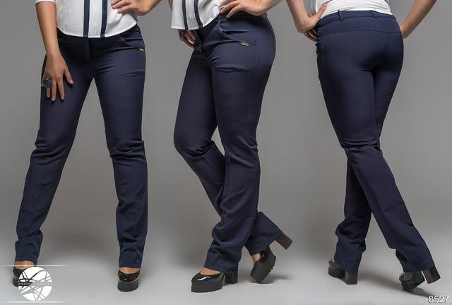 женские брюки жакеты костюмы