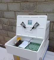 Инкубатор Наседка ИБМ-70 яиц с механическим переворотом