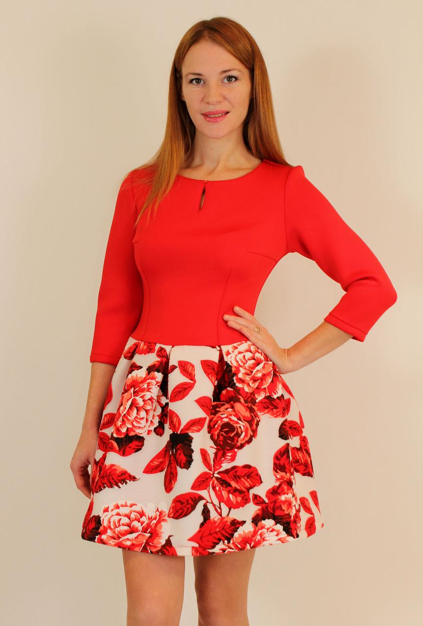Женская Одежда Normann