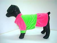 Платье для собаки велюр Фортуна