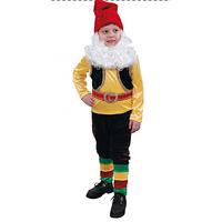 Карнавальный костюм детский Гном 344