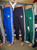 Спортивные мужские штаны демисезон Adidas - разные цвета