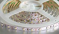 Лента светодиодная 3528 60 LED/M IP20 1 метр