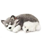 Дышащая игрушка мягкая Breathing Pet Хаски