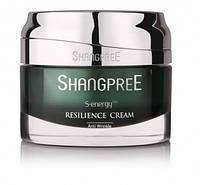 Восстанавливающий крем для лица для жирной и комбинированной кожи Resilience Fresh Cream