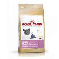Корм для котят породы Британская Короткошерстная Royal Canin British Shorthair Kitten 2 кг