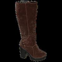 Замшевые зимние коричневые сапоги на устойчивом каблуке
