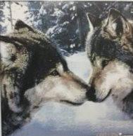 Поцелуй волков  Набор для вышивания крестиком с печатью на ткани 14ст