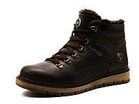 Ботинки Bumer, высокие, мужские, натуральная кожа, коричневые, фото 1
