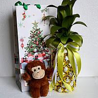 """Новогодний подарок """"Ананас из конфет с обезьянкой"""""""