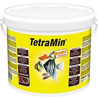 Корм для аквариумных рыб TetraMIN 10 л / 2,1 кг хлопья основной корм для рыб (769939)