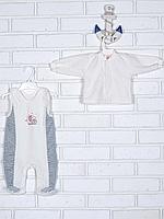 Велюровый комплект для малышей