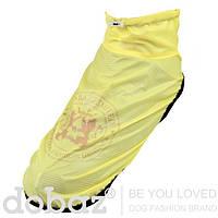 Длинная куртка - пыльник для собак DOBAZLIMITED, желтый, размер XS, S, M, XL
