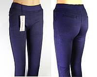Лосины под джинсы тёплые с мехом внутри ЛАСТОЧКА  синие 4XL ЛЖЗ-71