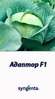 Семена капусты Адаптор F1 2500 шт