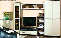 Стенка Спектр 1,8 + Шкаф (БМФ) Венге