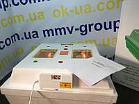 Инкубатор бытовой `Квочка` МИ-30-1 с цифр дисплеем