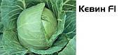 Семена капусты белокочанной Кевин F1,Syngenta (Сингента) 2500 семян