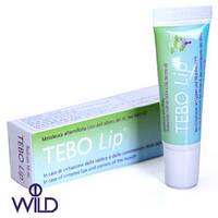 Tebo Lip роликовый бальзам для губ с маслом чайного дерева