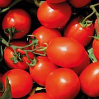 Семена томата Фузер F1 1000 сем