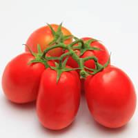 Семена томата Монти F1 1000 сем