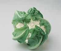 Семена цветной капусты Локрис F1 1000 сем.