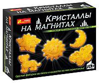 Ранок Креатив Наука Кристаллы на магнитах 0384 Желтые Набор для научного творчества