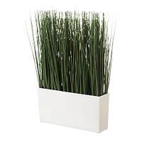 """IKEA """"ФЕЙКА"""" Искусственное растение в кашпо, трава"""