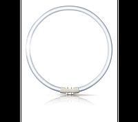 Лампа кольцевая PHILIPS TL 5С 55W/830  2GX13 (Китай)