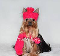 Вязаная красная шапочка и шарфик для собак