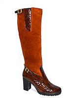 Женские высокие стильные сапоги, натуральный замш+кожа крокодил, демисезонные, фото 1
